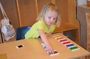 First Year of Montessori Education